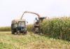 кукуруза, люди, награждение, председатель, профсоюзы