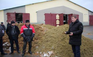 форма, 24, сельхозпредприятие, молоко, ферма, мясо