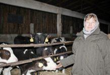 ферма, приболович, молоко, сельхоз, апк, надои