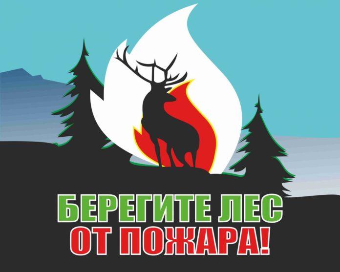 лес, пожар, безопасность, мчс