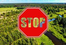 лес, запрет