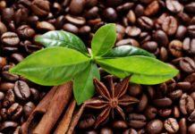 кофе, свойства, польза