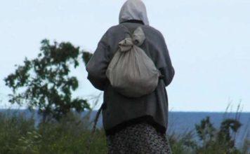пенсионерка, лес, заблудилась