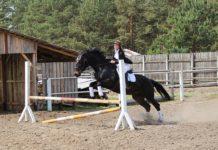 ФСК, Лельчицы, лошадь