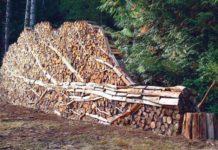 дрова, заготовка, Лельчицкий лесхоз