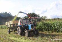кукуруза, апк, трактор