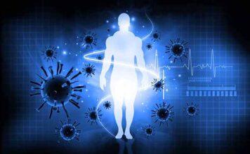 Коронавирус, вирус