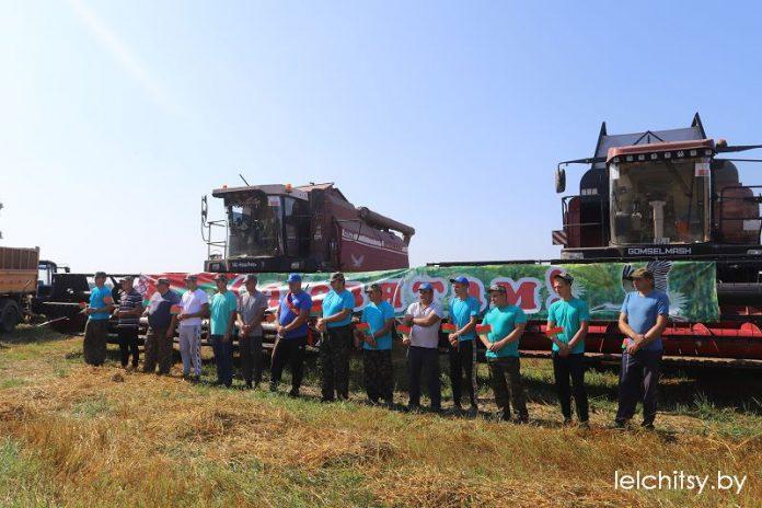 Вадзіцель ААТ «Новая Ніва» перавёз тысячу тон зерня